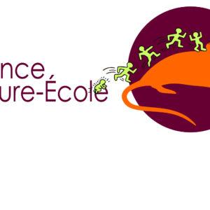 Alliance culture-école fait son cinéma